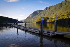 Floating Wharf at South Beach - Buntzen Lake (spetersonphotography ★★Happy New Year!★★) Tags: anmore portmoody britishcolumbia canada nikond5200 nikon lake buntzenlake buntzenlaketrail trail hiking walking forest trees water mountains bridges footbridges creeks vegetation roots swinmming beach southbeach northbeach summer watersports boating fishing sunset waterscape landscape wildlife rocks