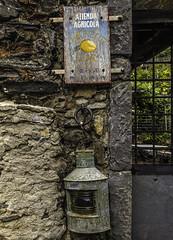 Azienda Agricola Lemonetto (keith_shuley) Tags: monterosso cinqueterre farm lemon italy