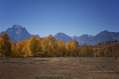 wish you were here... (J. Kaphan Studios) Tags: grandtetonnationalpark landscape landscapephotography mountains bigmountains tetons bluesky trees fall fallcolors jacksonhole wyoming nikon nationalparks nationalparkphotography nature