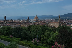 Florentine Landscape (Federica Schifano) Tags: firenze florence italia italy piazzalemichelangelo landscape nature sky trees cattedrale cathedral santamariadelfiore santacroce palazzovecchio gothic architecture medieval scorci views nikon nikon5200 effes dome cupola brunelleschi clocktower