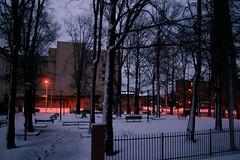 Snowy Park Evening (formulanone) Tags: snow snowy sunset evening pink purple baltimore maryland winter