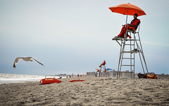 (Majka Kmecova) Tags: beach ocean water weather sand sun summer seagull lights shadows daylight day people lifeguard newyork rockaway usa us unitedstatesofamerica photo photography ngc