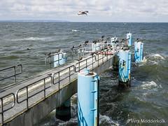 P9170252-33.jpg (loenatik) Tags: binz germany hauptstrand inselrugen sassnitz sellin beach sky skyline