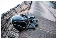 Cathdrale de Strasbourg (Francis =Photography=) Tags: france alsace grandest basrhin strasbourg church cathedral dom gargouille gargoyles metal pierre rock dragonail grsrose grsrosedesvosges cathdrale