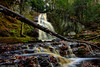 Saco-Bay-Trail-Cascade-Falls-in-Maine (Captain Kimo) Tags: waterfall maine saco cascadefalls photomatixpro hdrphotography singleexposurehdr tonecompressor