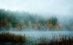 Berry Pond (kenbruger) Tags: autumn fall nikon newhampshire berrypond d700