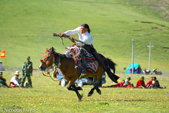 Marksman In The Festival Competition (Nick Mayo/RemoteAsiaPhoto) Tags: china horse festival rifle tibetan sichuan sershul