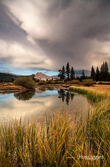 Autumn Storm in Tuolumne Meadows, Yosemite (Kristal Leonard) Tags: autumn reflection reflections yosemite thunderstorm yosemitenationalpark tuolumnemeadows highcountry