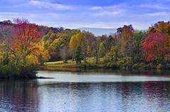 autumn lake - Explored (loco's photos) Tags: county blue autumn trees red sky lake green fall water yellow clouds season flickr pentax culpeper ducks foliage explore ripples nationalgeographic k30 mountainrunlake da18135wr