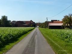 Rural (joeke pieters) Tags: rural germany landscape deutschland duitsland landschap landelijk panasonicdmcfz150 1020936 emkum