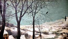 Bruegelpe9AG (jean louis mazieres) Tags: painting peinture peintres bruegel museumwien musevienne kunstshistorichesmuseum bruegelpierre