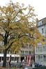 Geneva trees in Autumn (Nouhailler) Tags: tree geneva geneve genf