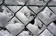 first snow ... (Rosmarie Voegtli) Tags: schnee snow fence grid drop zaun tropfen dornach