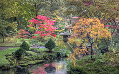 "Autumn in the Japanese Garden • <a style=""font-size:0.8em;"" href=""http://www.flickr.com/photos/45090765@N05/8131907711/"" target=""_blank"">View on Flickr</a>"