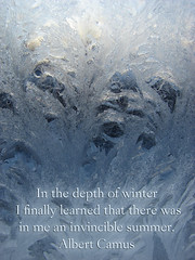 Depth of Winter (echoforsberg) Tags: winter frost quote camus frostywindow