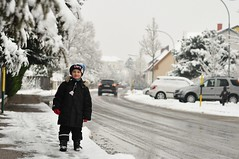 Veel lund! (anuwintschalek) Tags: street schnee winter white snow 50mm austria strasse january lumi weiss kalle niedersterreich thaw sula talv wienerneustadt lapsed tnav tauwetter valge 2013 nikond90 lrts