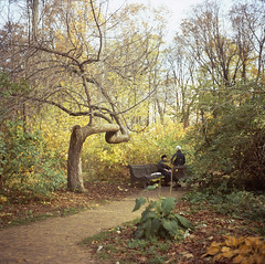 Autumn in Moscow (Yuree M) Tags: autumn film garden botanical university fuji state russia moscow mat velvia 124g yashica