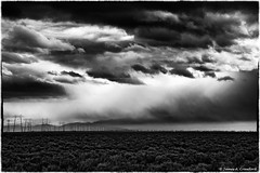 "Storm along Interstate 5 (James A. Crawford - ""Crawf"") Tags: california road wallpaper sky blackandwhite bw usa white storm black art texture nature clouds photoshop canon landscape eos blackwhite highway desert ngc creative calif textures cal freeway highways pro interstate roads storms canoneos unforgettable bakersfield freeways blackdiamond digitalphotography edges interstate5 blueribbonwinner finegold vividimagination creativephotography phototools justimagine cs5 efex colorefexpro semidesert niksoftware creativedigitalphotography flickraward viveza theunforgettablepictures creativepostprocessing gnneniyisithebestofday blackdiamondpremier silverefexpro ononephototools niksofware flickraward5 viveza2 flickrawardgallery extraordinarilyimpressive fineplatinum ruby10 finediamond ruby5 imageborders magicmomentsinyourlifelevel1"