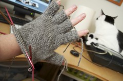 knucks in progress (devaburger) Tags: knitting gloves mitts knucks