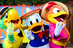 Three Caballeros (EverythingDisney) Tags: fiesta disneyland disney resort donaldduck dlr jamboree threecaballeros diadereyes bigthunderranch josecarioca panchitopistoles limitedtimemagic