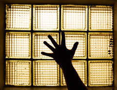 Hand (preynolds) Tags: window glass silhouette yellowlights glassblock tamron1750mm canon600d