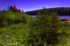 En Route 129 3-D ::: HDR/Raw Anaglyph Stereoscopy (Stereotron) Tags: north america canada province ontario forest woods outback backcountry lake river creek tree plants anaglyph anaglyph3d redcyan redgreen optimized anaglyphic anabuilder 3d 3dphoto 3dstereo 3rddimension spatial stereo stereo3d stereophoto stereophotography stereoscopic stereoscopy stereotron threedimensional stereoview stereophotomaker stereophotograph 3dpicture 3dglasses 3dimage twin canon eos 550d yongnuo radio transmitter remote control synchron in synch kitlens 1855mm tonemapping hdr hdri raw cr2