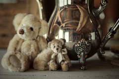 tea for two... (s@ssyl@ssy) Tags: teddy bears two tiny mink gfs silver teapot reflections shed myshedstudio