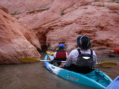 hidden-canyon-kayak-lake-powell-page-arizona-southwest-DSCF0037 (lakepowellhiddencanyonkayak) Tags: kayaking arizona kayakinglakepowell lakepowellkayak paddling hiddencanyonkayak hiddencanyon southwest slotcanyon kayak lakepowell glencanyon page utah glencanyonnationalrecreationarea watersport guidedtour kayakingtour seakayakingtour seakayakinglakepowell arizonahiking arizonakayaking utahhiking utahkayaking recreationarea nationalmonument coloradoriver labyrinthcanyon fullday fulldaykayaktour lunch padrebay motorboat supportboat awesome facecanyon amazing slot drinks snacks labyrinth joesams davepanu fulldaytrip