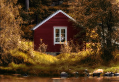 """autumn"" (jforberg) Tags: 2015 autumn woods house trees water waterfront norway noregia norwegian lesund aalesund scandinavia red green flickrunitedaward"