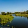 Zijrivier van de Bug (peterpj) Tags: mlynarzepolen bug river nikon pano lightroom6 poen polska zijrivier tributary nikonsigma sigma 3514 art
