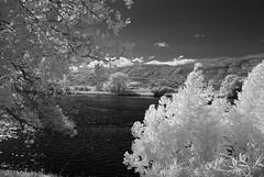Am Fluss 3 (ktmdriver74) Tags: infrarot fluss aare grenchen sony a100 hoya r72