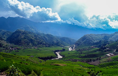Rice fields around Sapa, Vietnam