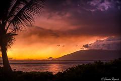 The Colors of Twilight (Charles Ragucci Photography) Tags: charles ragucci hawaiian maui kihei sunset ocean beach palm trees twilight dusk tropical