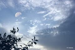 sky painters (tinalves My Eyes) Tags: sky myeysbytinalves moon