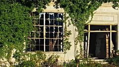 Close-Up of doomed Old Bona Allen Tanners Office (Bella Lisa) Tags: bonaallencompany bonaallen tannery leather saddle collar saddlery historical building bufordgeorgia