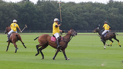 Guards Polo Club Aug 2016 29 (Timelapsed) Tags: sport ourdoors horseback hourse windsor windsorgreatpark