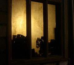 Artisan's Window (compulsiveowl) Tags: night window shades shade curious horse toy