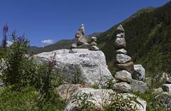 Pur granit (Larch) Tags: stone granit granite cairn fleur flower epilobe lauriersdesaintantoine t summer valferret valledaoste montagne mountain alps alpes ciel sky quilibre balance fireweed