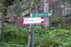 Val Genova (TN), 2016. (Fiore S. Barbato) Tags: italy trentino val rendena genova cascata cascate nardis trekking sentiero sentieri fiume sarca