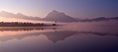 autumn morning at Hopfensee (judith.kuhn) Tags: landschaft landscape waterscape see lake hopfensee bavaria bayern allgu schwangau berge gebirge mountains alpen alps allgueralpen morgendmmerung dawn nebel dunst fog dust