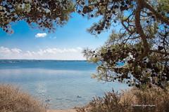 Blue Lagoon (macdomy) Tags: mozia
