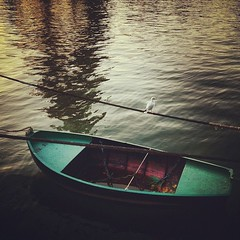 Morning Boat (StylelaB) Tags: life morning paris france reflection bird tower animal mobile seine river square photography cool eiffel explore squareformat rise 4s iphone iphoneart iphoneography instagramapp uploaded:by=instagram foursquare:venue=4c3f6eeece54e21eb60b081a