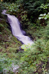 -6957 (rlcjr) Tags: alaska forest waterfall tongass