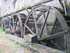 Anglų lietuvių žodynas. Žodis waterwheel reiškia n vandens ratas, vandenratis lietuviškai.