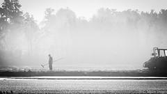 American Farmer (c. Melon Images) Tags: bw mist fog forest canon farm candid harvest explore cranberry handheld highkey farmer bog pinebarrens coastalplain markiii explored whitesbog brendanbyrne