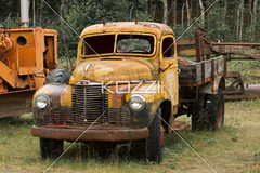 worn yellow truck (jenntrans8877) Tags: old classic car alaska museum truck vintage ancient automobile antique antiquecar rusted transportation weathered trucks oldcars vintagecars outdated landtransportation
