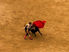Close (pruse) Tags: pink red brown texture fight spain purple running run bull ring soil dirt bullfight pamplona runningofthebulls matador torero iruna