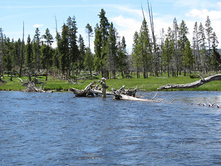 Montana Luxury Fly Fishing Lodge - Yellowstone 18