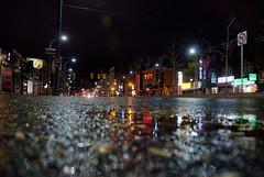 Hurricane Leftovers in Toronto (Nicolai Grut) Tags: toronto ontario canada rain night chinatown hurricane spadina kensingtonmarket torontoist