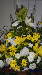 Fresh Flower Arrangement - Florist in Barbados (sejuselektion) Tags: birthday church shop barbados florist bridal flowershop flowershops churchflowers freshflowerarrangement sejuselektion flowershopinbarbados sejuselektionflowershop sejuselektionflowergiftshop barbadosweddings barbadosdestinationweddings barbadosweddingflorist